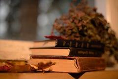 Do outono vida ainda dos livros na soleira Foto de Stock