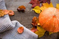 Do outono vida ainda Folhas de outono, lenço morno e abóbora na placa de madeira Vista superior Configuração lisa Fotos de Stock