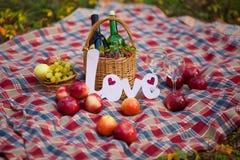 Do outono vida ainda na cesta do piquenique das madeiras Fotos de Stock Royalty Free