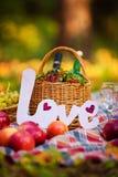 Do outono vida ainda na cesta do piquenique das madeiras Imagens de Stock