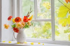 Do outono vida ainda na soleira Fotos de Stock Royalty Free