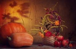 Do outono vida ainda no fundo escuro Fotos de Stock