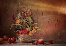 Do outono vida ainda no fundo escuro Foto de Stock Royalty Free