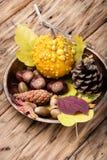 Do outono vida simbólica ainda Fotografia de Stock