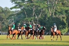 DO PLF DO POLO COPO 2011 DE MUNDO Imagens de Stock Royalty Free