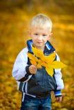 Do rapaz pequeno outono fora Imagem de Stock