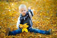 Do rapaz pequeno outono fora Imagens de Stock Royalty Free