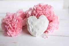 Do rosa vida ainda para o dia de mães Fotografia de Stock