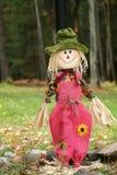 Do Scarecrow- opinião completamente - Fotografia de Stock