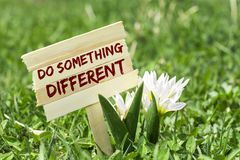 Do something different. On wooden sign in garden with white spring flower stock images