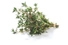 Do Thymus fresco das ervas do tomilho arbusto vulgar imagens de stock royalty free