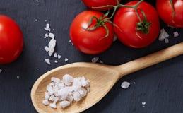 Do vegetariano vida ainda com os tomates, pimento e sal frescos da uva na colher de madeira no fundo de madeira, foco seletivo Imagem de Stock Royalty Free