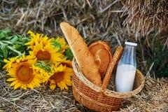 Do verão vida ainda com pão e leite fora Fotografia de Stock Royalty Free