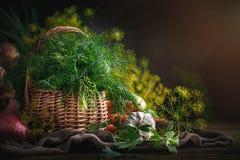 Do verão vida ainda de vegetais e do aneto maduros Imagem de Stock Royalty Free