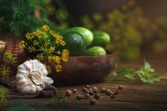 Do verão vida ainda de vegetais e do aneto maduros Fotografia de Stock