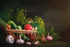 Do verão vida ainda de vegetais e do aneto maduros Foto de Stock Royalty Free