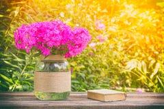 Do verão vida ainda do ramalhete do flox das flores e de livros velhos pequenos na tabela de madeira no fundo ensolarado natural Imagem de Stock Royalty Free