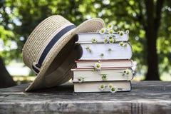 Do verão vida rural ainda no ar livre entre árvores Imagens de Stock Royalty Free