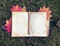Do vintage vida ainda com o livro aberto da memória na grama Imagem de Stock Royalty Free