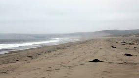 Do zumbido céu nublado Sandy Beach With Waves para fora vídeos de arquivo