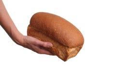 Doação do pão Fotos de Stock