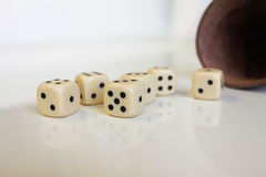 Dobbel van het de kopleer van Kniffel van het spelspel het aantalgeluk Royalty-vrije Stock Afbeelding