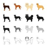 Doberman, beagle, pomeranian, and other web icon in cartoon style.Dog, animal, domestic, icons in set collection.