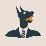 Doberman dog dressed up in black suit. Royalty Free Stock Photo