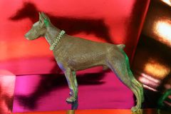 Doberman figure reflects Royalty Free Stock Image