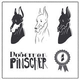 Doberman Pincher Dog icons set Stock Photography