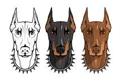 Doberman pinscher, amerykański doberman, zwierzę domowe logo, psi doberman, barwiący zwierzęta domowe dla projekta, colour ilustr ilustracja wektor