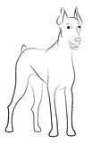 Doberman Pinscher. 's puppy contour silhouette isolated on White Royalty Free Stock Images