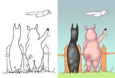 Doberman y cerdo que vigilan la cerca Fotos de archivo