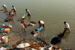 Dobhi in the Ganges Stock Image
