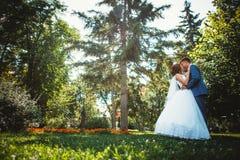 Dobiera się fornala i panny młodej na parkowym tle w pełnym przyroscie Fotografia Stock