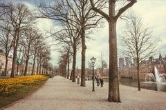 Dobiera się odprowadzenie za kanałem i xiii wiek gotyka kasztelem Binnenhof Obraz Royalty Free