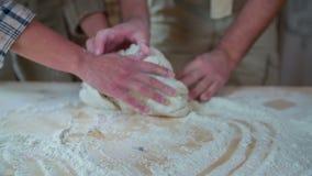 Dobiera się sumującą mąkę dom robić konar zbiory wideo