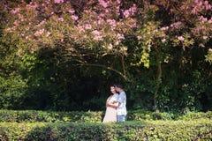 Dobiera się w miłości - Zaczynać Love Story Mężczyzna i dziewczyny romantyczna data w parku Zdjęcia Royalty Free
