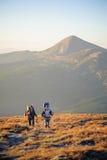 Dobiera się wycieczkowiczy w Carpathians górach z plecakami Zdjęcia Royalty Free