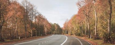Doble en el camino que pasa a través de un bosque del otoño Fotografía de archivo libre de regalías