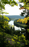 Doble en el río, enmarcado por las hojas de arce Fotografía de archivo