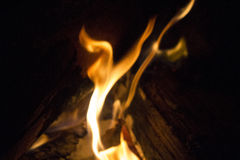 Doble flames Stock Photography