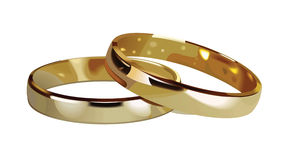 Doble gold rings Stock Photos