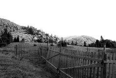 Doble para las ovejas en montañas Fotos de archivo