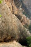 Dobradores bonitos do monte da textura do complexo sittanavasal do templo da caverna Fotos de Stock