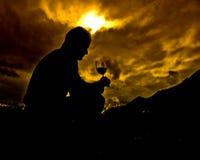 dobre wino ze szkła Zdjęcia Stock