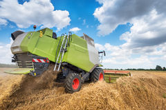 Dobrich, Болгария - 8-ое июля 2016: Зернокомбайн Claas Lexion 660 стоковые изображения rf