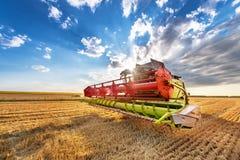 Dobrich, Болгария - 8-ое июля 2016: Harv зернокомбайна Claas Lexion 660 Стоковая Фотография RF