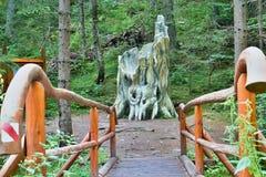 Dobrocska冷杉在一个森林露天博物馆在Vydrovo 免版税库存图片