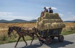 Dobrogea, Romania, Europa, paesaggio rurale Fotografia Stock